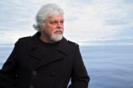 Paul Watson, Sea Shepherd Founder & Greenpeace Co-founder